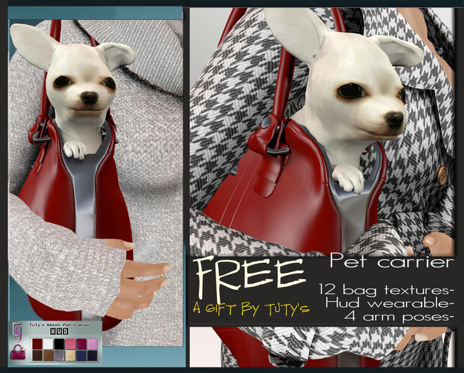 pet_carrier_free_copia