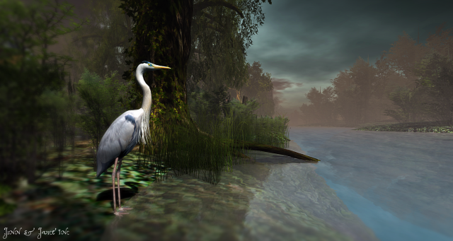 Bayou Heron
