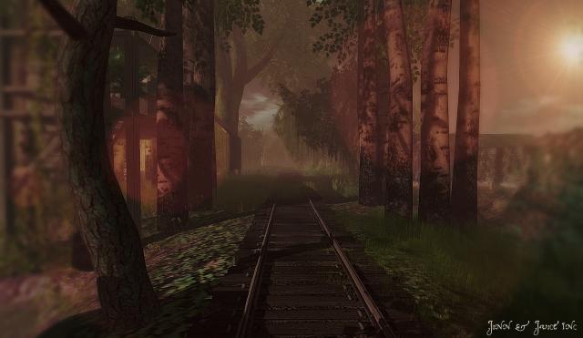 Bayou Tracks 1
