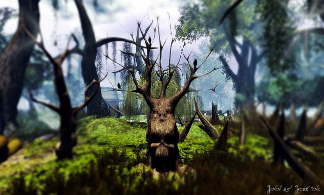 Bayou voodoo tree