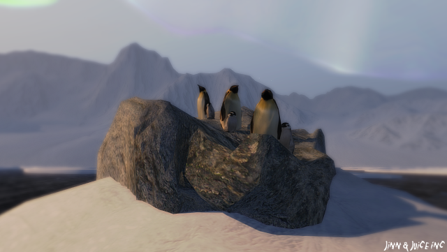 surf penguins